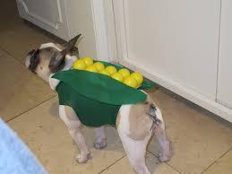 corn dog diy costume the hostess handbook