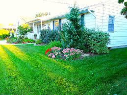 my favorite low maintenance perennials for sun u0026 shade andrea dekker
