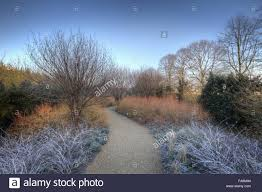 the winter walk in february at anglesey abbey in cambridgeshire