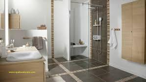 chambre de bain d馗oration deco carrelage moderne pour carrelage salle de bain meilleur de best