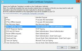 how to create a new certificate template for ca web enrollment
