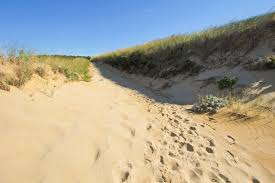 great island trail to jeremy point in cape cod national seashore
