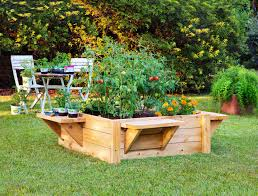 creative idea small vegetables garden design around brown wood