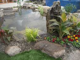 Aquascape Nj Spring Summer Pond Maintenance Warwick Orange County Ny Northern