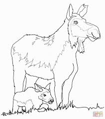 clever design moose coloring pages printable to print and zee book
