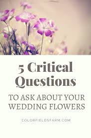 wedding flowers questions to ask color fields color fields