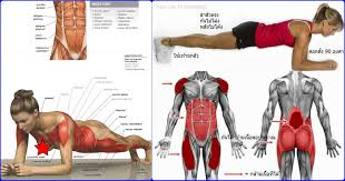 Tips To Last Longer In Bed 7 Workout Tips For Men To Last Longer In Bed Valentinbosioc Com