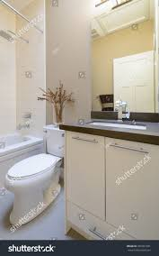 bright bathroom interior with clean interior design clean bright bathroom house stock photo 465061031