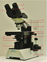 Parts Of A Compound Light Microscope Parts And Functions Of A Compound Microscope