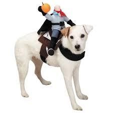 headless horseman costume headless horseman pet costume coolpetstuff