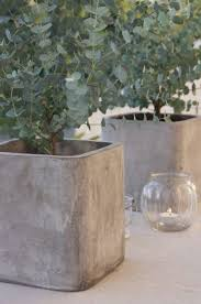 large concrete planter sony dsc glamorous large concrete planters for sale cement
