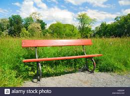 Wooden Park Bench Wooden Park Bench In Springtime Greenery Stock Photo Royalty Free