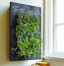 cool kitchen wall herb garden 29 about remodel home decorating