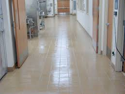 anytime carpet cleaning u2013 tile grout u0026 concrete
