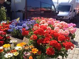 Flowers For Sale Helsinki Market Square Flowers For Sale U2013 Martha Pfeil