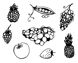 fruit and vegetables doodle set isolated on white flickr