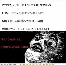 Funniest Memes 2013 - funny memes ice is bad for you meme shuffle pinterest