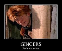 Funny Ginger Meme - ginger jokes meme jokes best of the funny meme