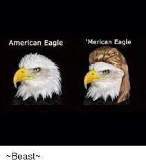 America Eagle Meme - 25 best memes about eagle eagle memes