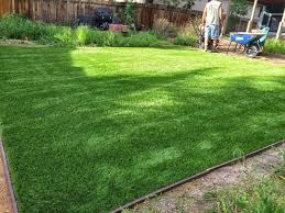 Astro Turf Backyard Artificial Grass Installation Broomfield Co Lawn Pros