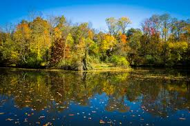 r aration canap fall reflections on the delaware and raritan canal stock photo