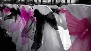 Pink Chair Covers Chair Covers Pink And Black Stock Photo Picture And Royalty Free