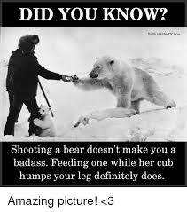 Truth Bear Meme - did you know truth inside of you shooting a bear doesn t make you a