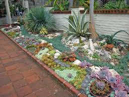Rock Garden Succulents Succulent Arranging World Of Succulents