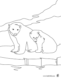 polar bear coloring pages coloring page