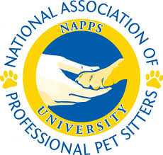 Comfort Pet Certification Napps Certificate Courses National Association Of Professional