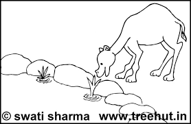rakhi coloring pages camel coloring pages