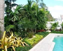 tropical landscaping garden ideas designwalls com