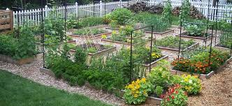 Square Foot Garden Layout Ideas Square Foot Gardening Method