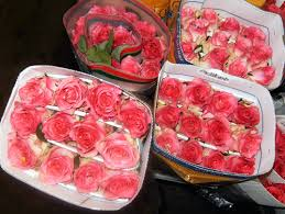 wholesale roses wholesale roses for two budget friendly beauty