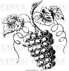 vintage martini clipart black and white victorian clip art 67