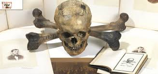 skull and bones conspiracy archive