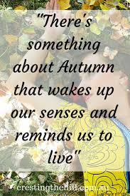 thanksgiving wisdom quotes 115 best quotes images on pinterest