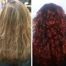 sebastian cellophanes colors fiery ombre color transformation by v preen me