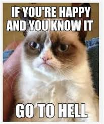 Grumpy Cat Yes Meme - carolyn in carolina my favorite new meme grumpy cat yes i am
