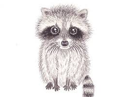 raccoon watercolor etsy
