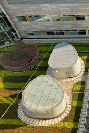 green roofs offer natural views and access to green space for