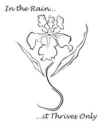 tattoo flower drawings 36 best iris tattoos design and ideas