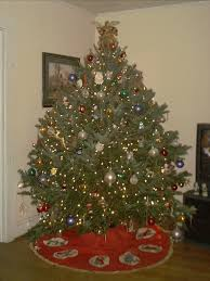 fresh cut christmas trees from redrock farm