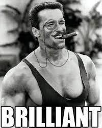 Arnold Schwarzenegger Memes - brilliant arnold schwarzenegger memes