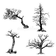 drawing set of four trees sketch illustration stock vector image