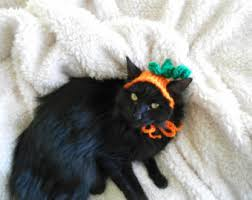 Pet Cat Halloween Costume Cat Costume Witch Hat Hissy Witch Cat Halloween Costume