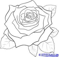 25 trending how to draw roses ideas on pinterest easy rose