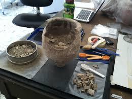 cremation remains bones abroad interpreting cremations bones don t lie