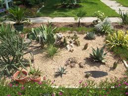 small cactus garden design garden design ideas