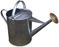 apollo gardening 9l traditional galvanised metal watering can